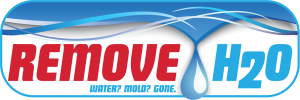 RemoveH2O water and mold removal